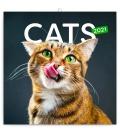 Wall calendar Cats 2021