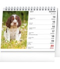 Table calendar Dogs – with dog names 2021