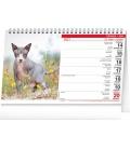 Table calendar Cats 2021