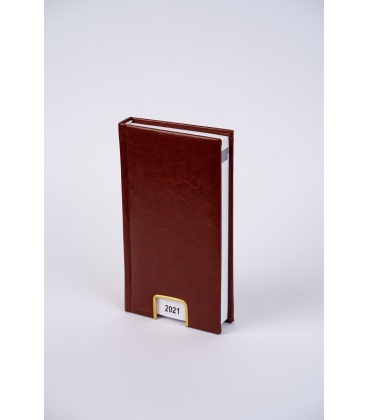 Daily Diary 809 (98x183) Nebraska brown 2021