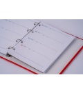 Diary - Pages for Diary 723  2021