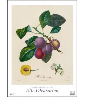 Wall calendar Alte Obstsorten (P.-A. Poiteau) 2021