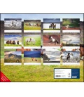 Wall calendar Insel der Pferde: Island und seine Isländer (Christiane Slawik) 2021