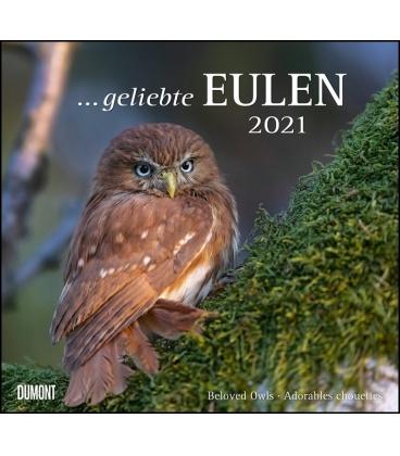 Wall calendar ...geliebte Eulen 2021