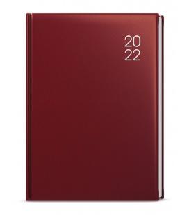 Daily Diary B6 - Adam - balacron 2022