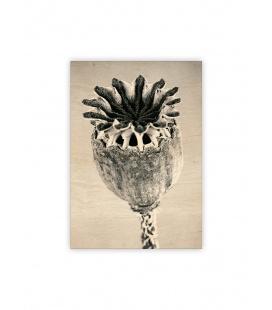 Wall calendar - Wooden picture - Poppyhead 2022