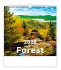 Wall calendar Forest/Wald/Les 2022