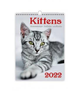 Wall calendar Kittens/Katzenbabys/Koťátka/Mačičky 2022