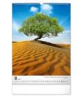 Wall calendar Trees 2022