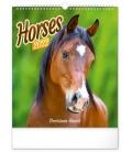 Wall calendar Horses 2022