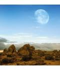Wall calendar The Moon 2022