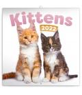 Wall calendar Kittens 2022