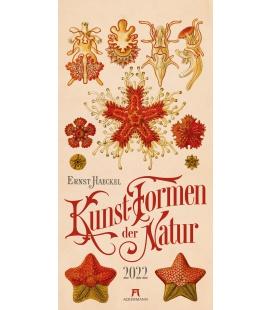 Wall calendar Kunst-Formen der Natur - Ernst Haeckel Kalender 2022