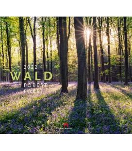 Wall calendar Wald Kalender 2022