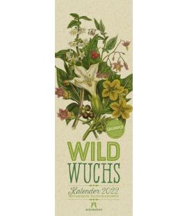 Wall calendar Wildwuchs - Botanische Illustrationen - Graspapier-Kalender 2022