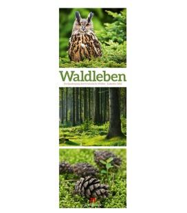 Wall calendar Waldleben - Ein Spaziergang durch heimische Wälder, Triplet-Kalender 2022