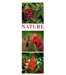 Wall calendar Nature - Triplet-Kalender 2022