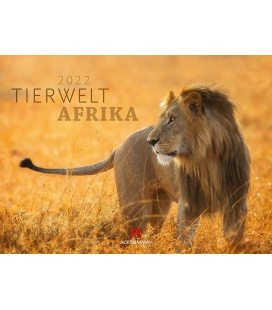 Wall calendar Tierwelt Afrika Kalender 2022