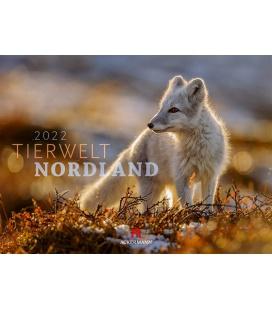 Wall calendar Tierwelt Nordland Kalender 2022