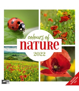 Wall calendar Colours of Nature Kalender 2022