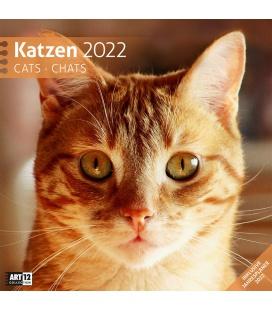 Wall calendar Katzen Kalender 2022